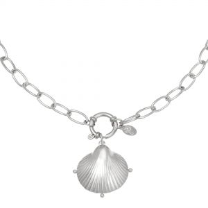Collar clam shell