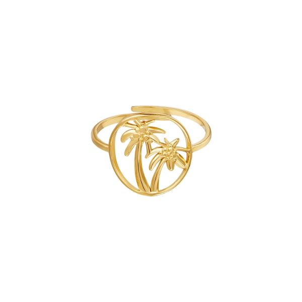Palmera de anillo de acero inoxidable