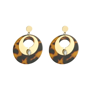 Earrings Steel Hoops