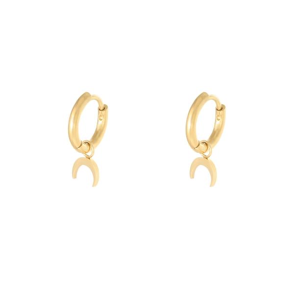 Earrings hanging horn