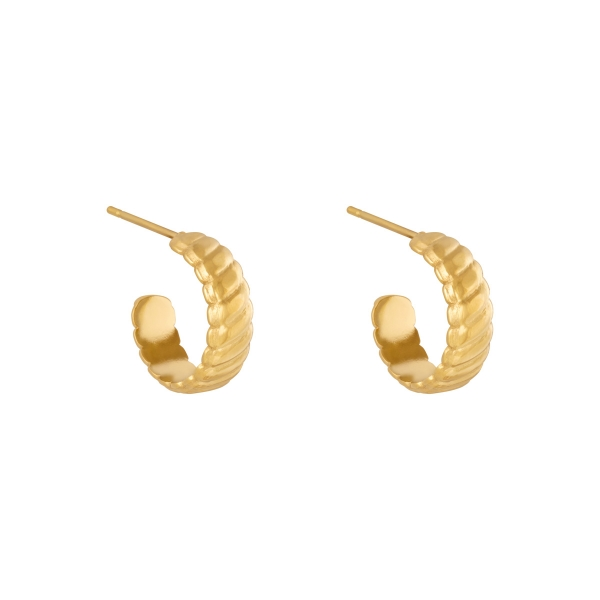 Earrings romans