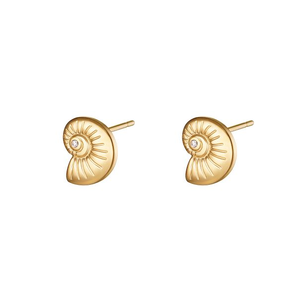 Pendientes twisted shell
