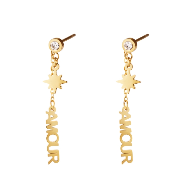 Stainless steel earring Amour