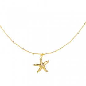Collier Starfish Wish