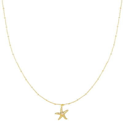 Necklace Starfish Wish