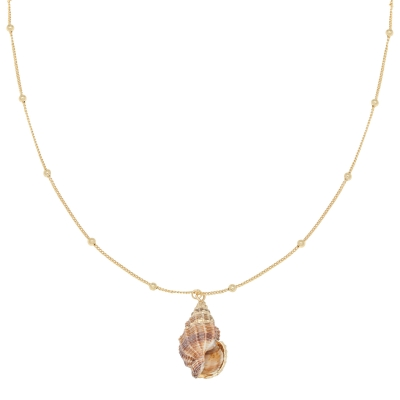 Necklace Shell Queen