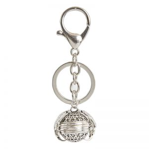 Key Chain Picture Perfect