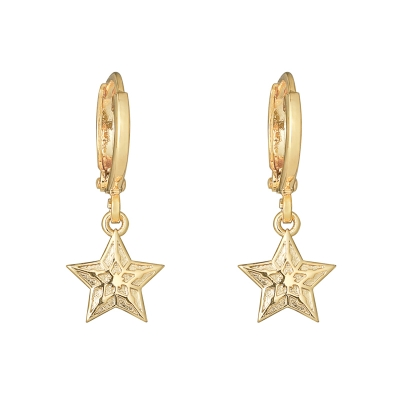 Earrings Sparkling Star