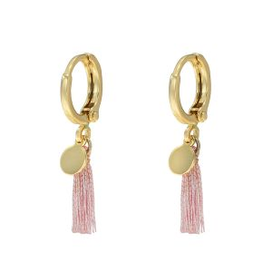 Earrings Shiny Tassel