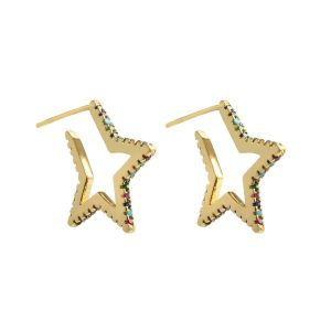 Earrings super star