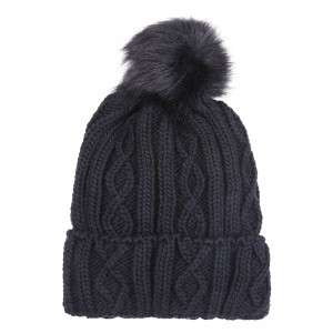 Beanie Cozy Winter