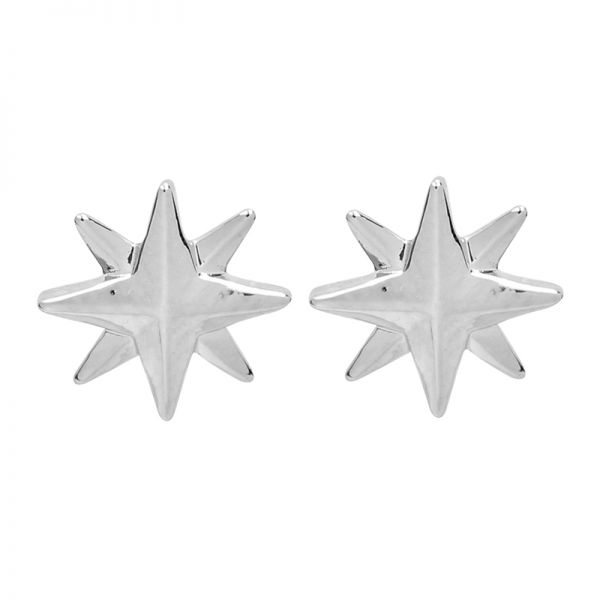 Earrings Shining Star