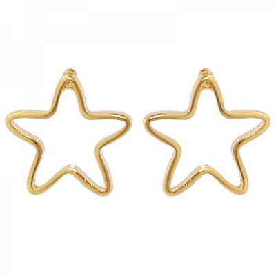 Earrings Small Star