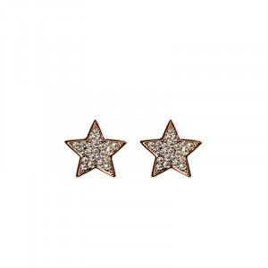 Earrings Sparkly Star