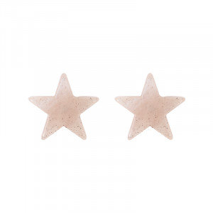 Earrings Ear Star