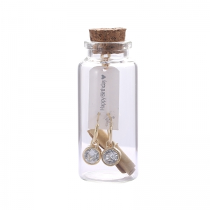 Giftset Earrings Message in a bottle 'Happy Birthday'