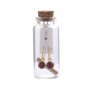 Giftset Earrings Message in a bottle 'I <3 You'