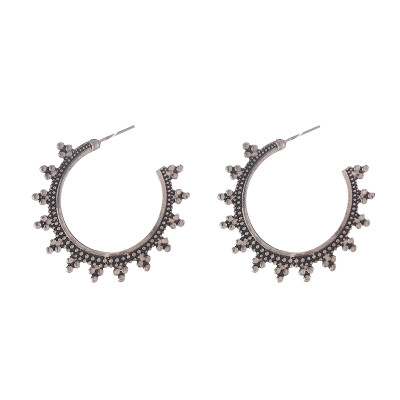 Earrings Fashionable Hoops