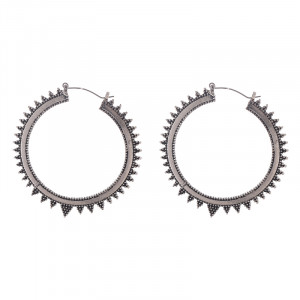 Earrings Trendy Hoops