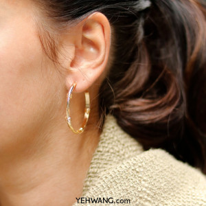Earrings Fashionable Creoles