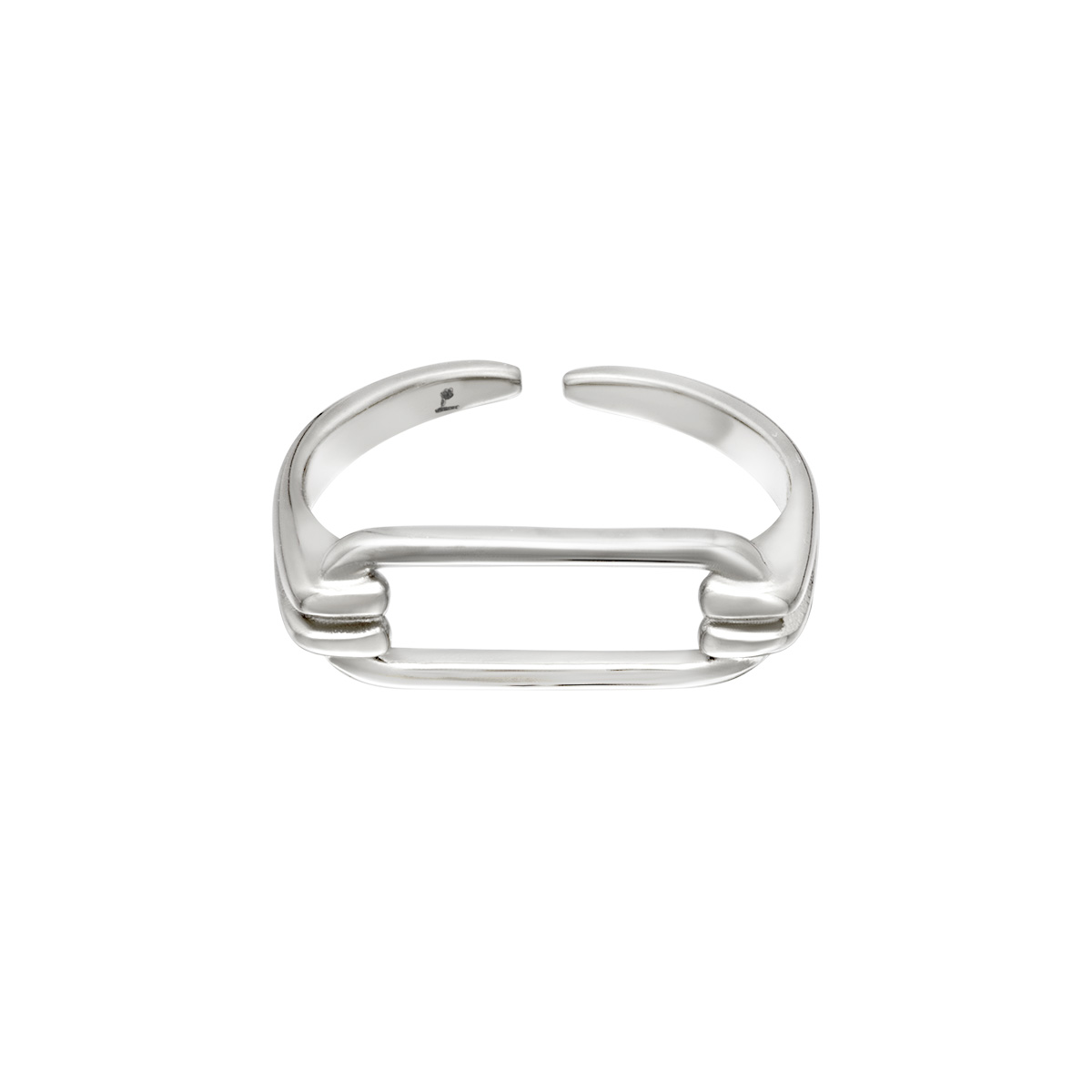Geometrically shaped stainless steel ring