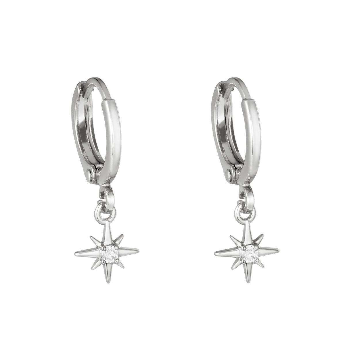 Earrings Lustrous