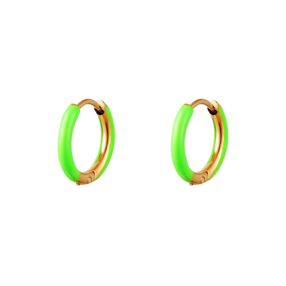 Stainless Steel Earring Color Hoop